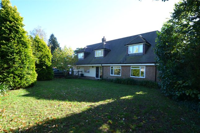 Thumbnail Detached house to rent in Rew Lane, Chichester, West Sussex