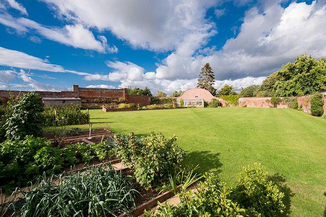 Thumbnail Land for sale in Hanley William, Tenbury Wells