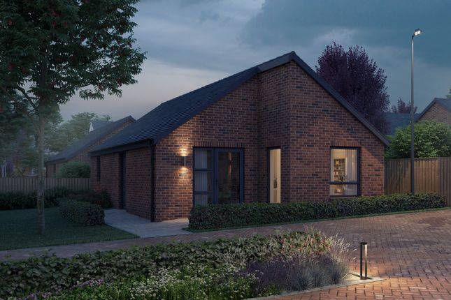Thumbnail Detached bungalow for sale in The Holstein, Jacques Orchard, South Normanton