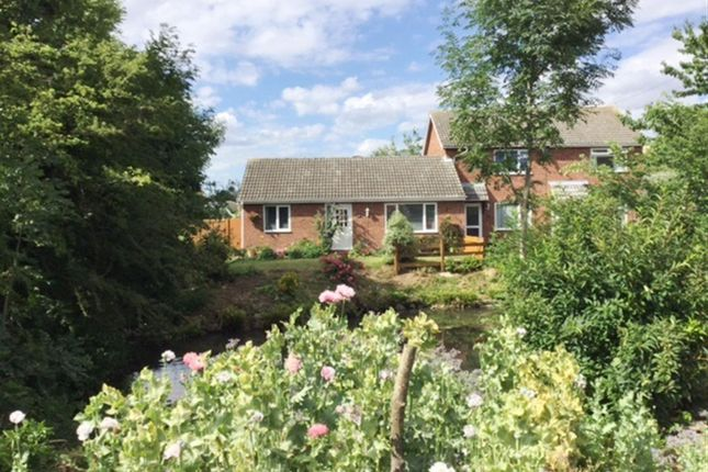 Thumbnail Bungalow for sale in Central Crescent, Hethersett, Norwich