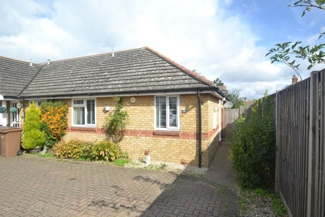 Thumbnail Bungalow for sale in Roxwell, Chelmsford, Essex
