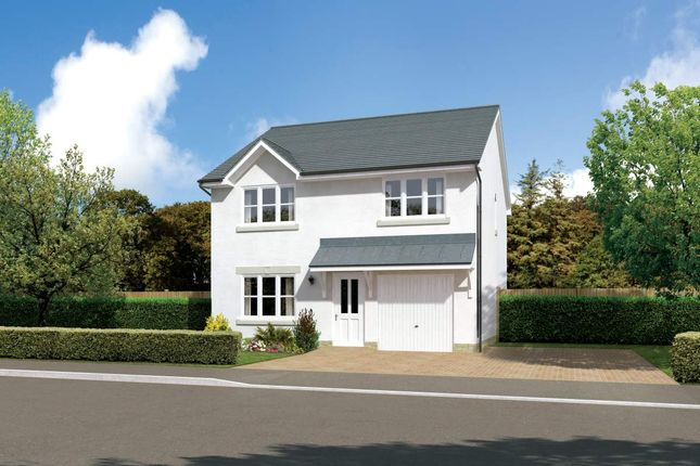 "Thumbnail Detached house for sale in ""Denewood"" at Earl Matthew Avenue, Arbroath"