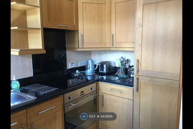 Thumbnail Flat to rent in Bane Loaning, Dumfries
