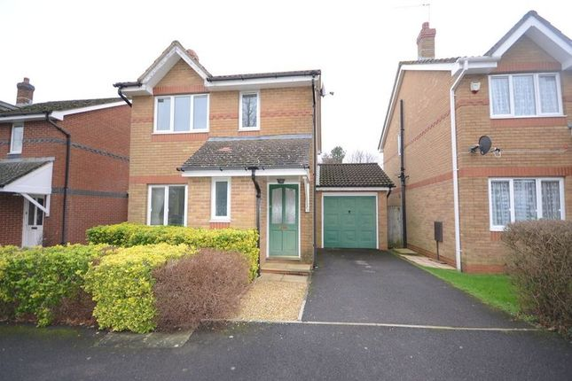 Thumbnail Detached house to rent in Birches Crest, Hatch Warren, Basingstoke