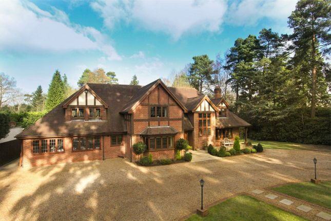 Thumbnail Detached house for sale in Wellingtonia Avenue, Crowthorne, Finchampstead
