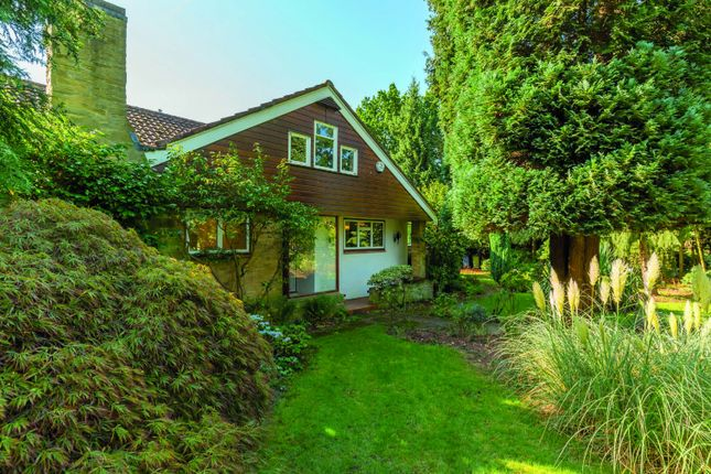 Thumbnail Detached bungalow for sale in Chiltern Hill, Chalfont St. Peter, Gerrards Cross