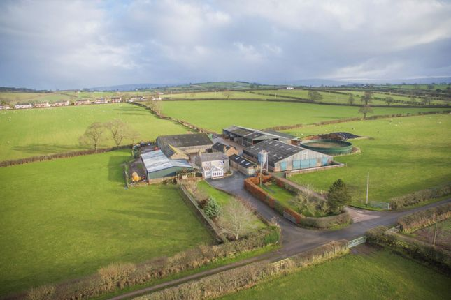 Thumbnail Farm for sale in Southwaite, Carlisle