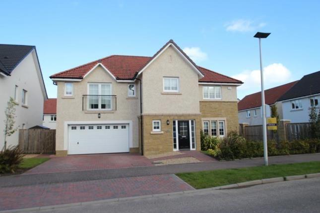 Thumbnail Detached house for sale in Jardine Avenue, Larbert, Stirlingshire