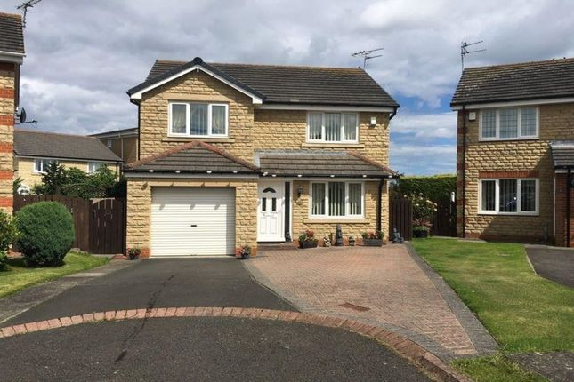 Thumbnail Detached house for sale in Humford Green, Blyth