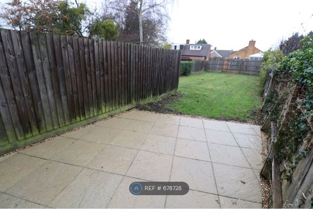Rear Garden of Boughton Green Road, Northampton NN2