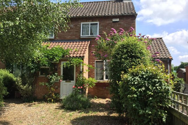 Thumbnail Semi-detached house to rent in Marsh Lane, Worlingham, Beccles