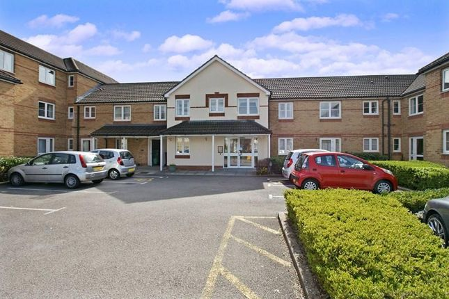 Thumbnail Property for sale in St. Fagans Road, Cardiff