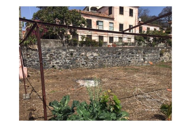 Thumbnail Country house for sale in Funchal (Santa Luzia), Funchal (Santa Luzia), Funchal