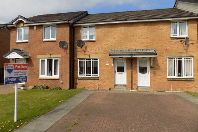 Thumbnail Terraced house for sale in Saffron Crescent, Wishaw