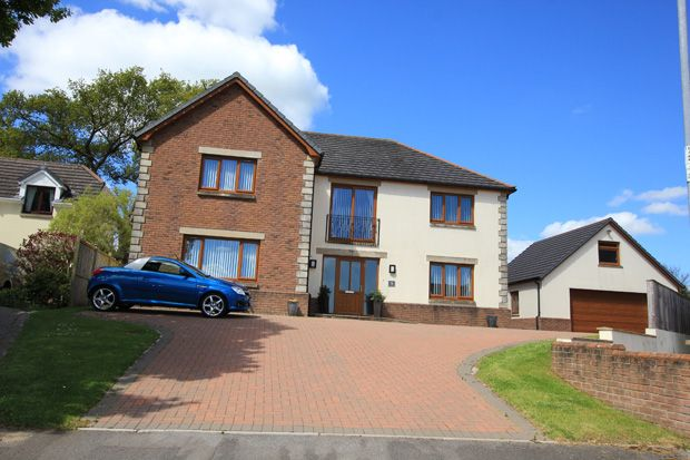 Thumbnail Detached house for sale in Dol Yr Onnen, Monument Hill, Carmarthen, Carmarthenshire