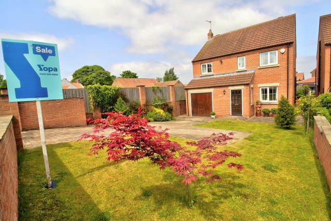 Thumbnail Detached house for sale in New Lane, Green Hammerton, York