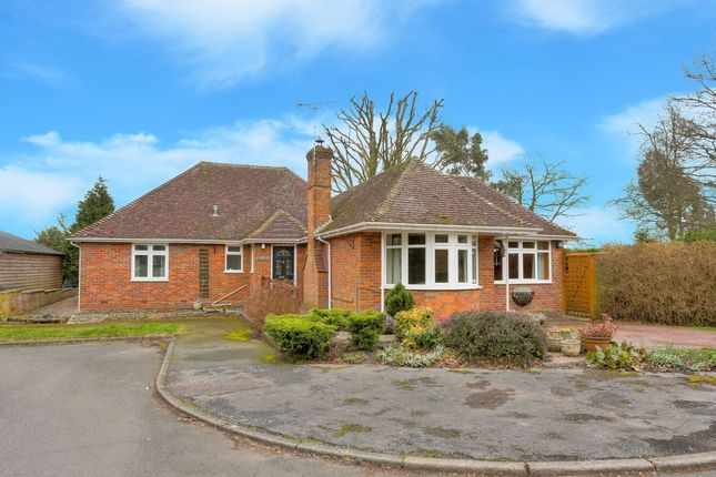 Thumbnail Bungalow for sale in Swannells Wood, Studham, Dunstable
