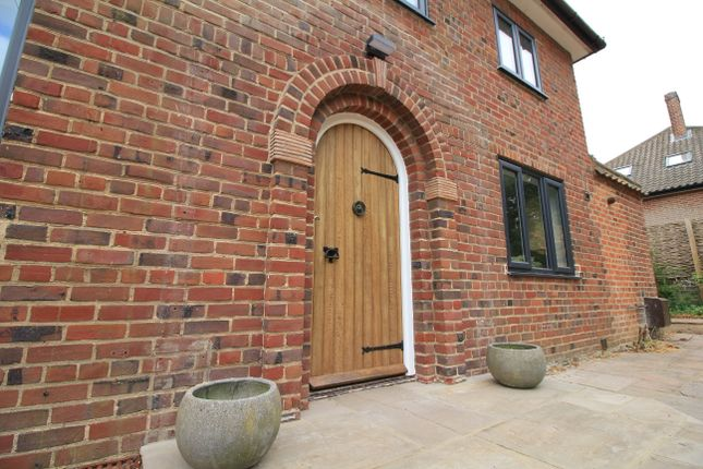 Thumbnail Detached house to rent in Hilly Plantation, Norwich