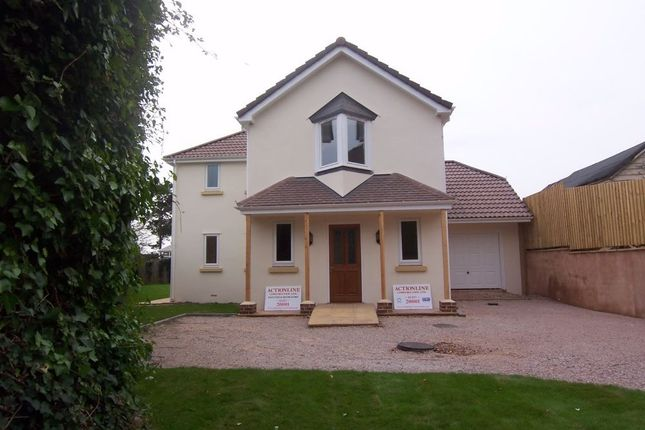 Thumbnail Detached house to rent in Marlpit Lane, Seaton
