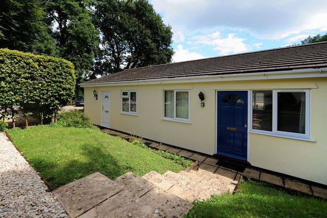 Thumbnail Bungalow to rent in Fernhill, Charmouth, Bridport