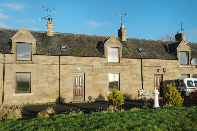 Thumbnail Terraced house for sale in Coldstream