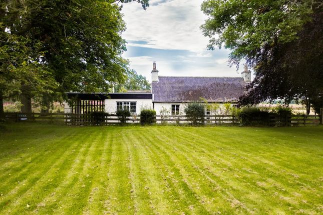 Thumbnail Cottage for sale in Gardeners Cottage, The Hollies, Kildary, Invergordon
