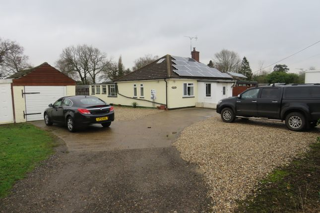 Thumbnail Detached bungalow for sale in Green Lane, Ardleigh, Colchester