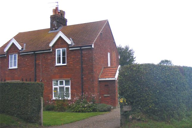 Thumbnail Semi-detached house to rent in Herringby Cottage, Herringby, Great Yarmouth, Norfolk