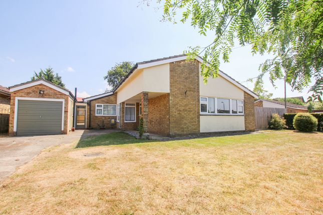 Thumbnail Detached bungalow for sale in The Elms, Great Chesterford, Saffron Walden