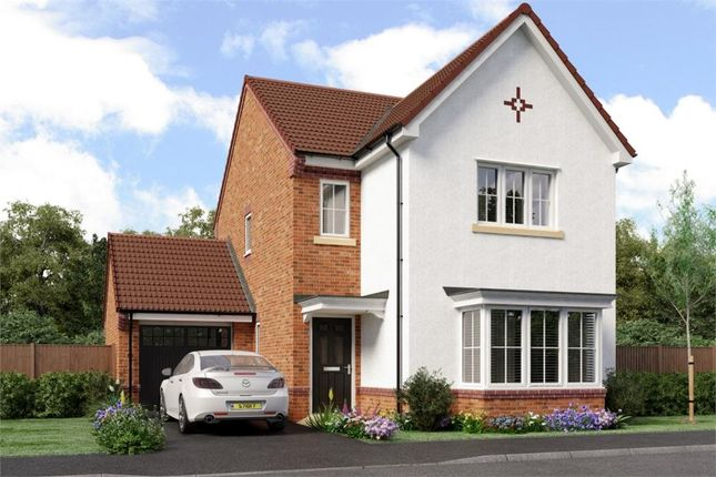 "Thumbnail Detached house for sale in ""Esk"" at Sophia Drive, Great Sankey, Warrington"