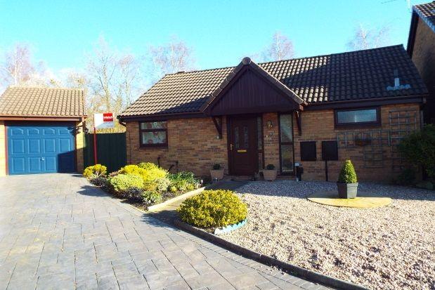 Thumbnail Bungalow to rent in Ringwood Close, Birchwood, Warrington