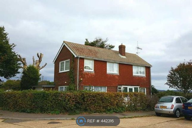 Thumbnail Detached house to rent in Bodiam Ave, Bexhill On Sea
