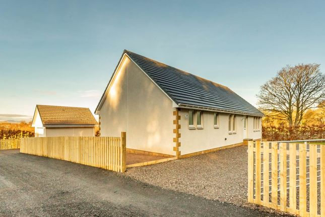 Thumbnail Detached bungalow for sale in Coupar Angus, Blairgowrie