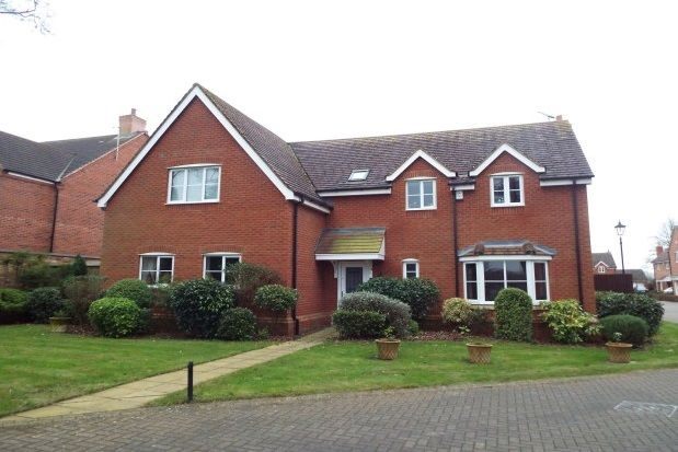 Thumbnail Detached house to rent in The Pines, Bushby, Leicester