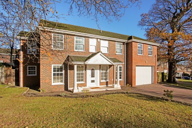 Thumbnail Property to rent in Illingworth, Windsor