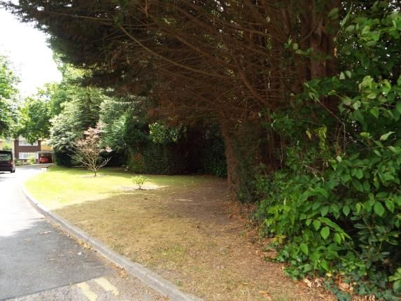 Garden of 55 Brownhill Road, Eastleigh, Hampshire SO53
