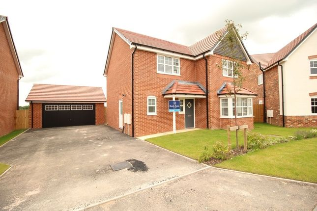 Thumbnail Detached house to rent in Teal Close, Wesham, Preston