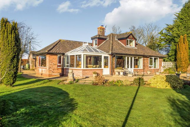 Thumbnail Bungalow for sale in Hungate Lane, Aylsham, Norwich
