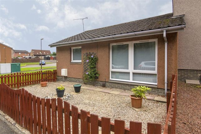 Thumbnail Bungalow for sale in St. Margarets Crescent, Polmont, Falkirk
