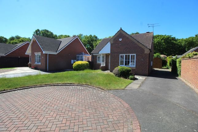 Thumbnail Bungalow for sale in The Bramblings, Bessacarr, Doncaster