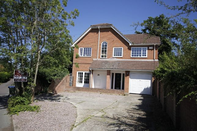 Thumbnail Detached house for sale in Chapel Road, Sarisbury Green, Southampton