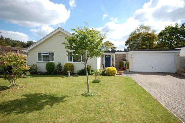 Thumbnail Detached bungalow for sale in Larch Way, Ferndown