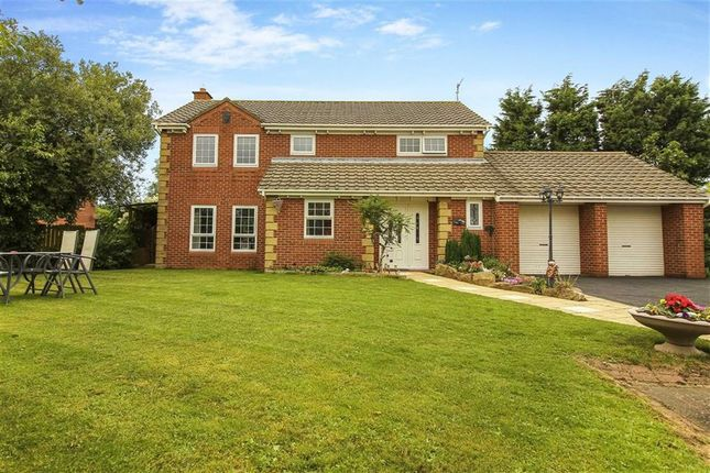 Thumbnail Detached house for sale in Abbots Way, North Shields, Tyne And Wear