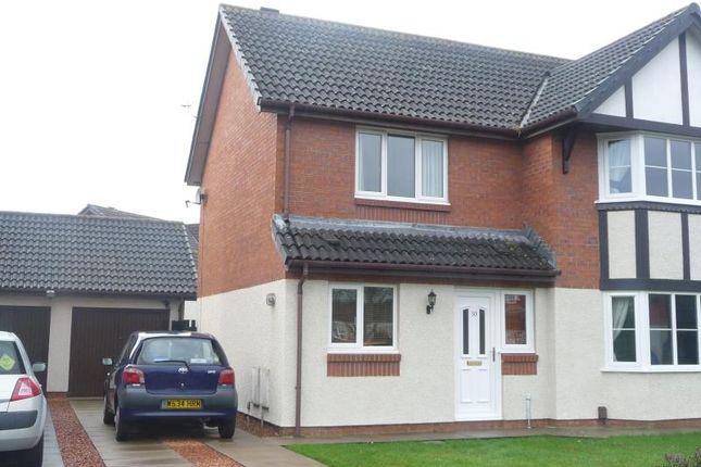 Thumbnail Semi-detached house to rent in Tribune Drive, Houghton, Carlisle