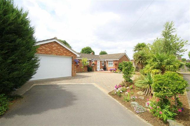 6 bed bungalow for sale in Okebourne Park, Swindon, Wiltshire