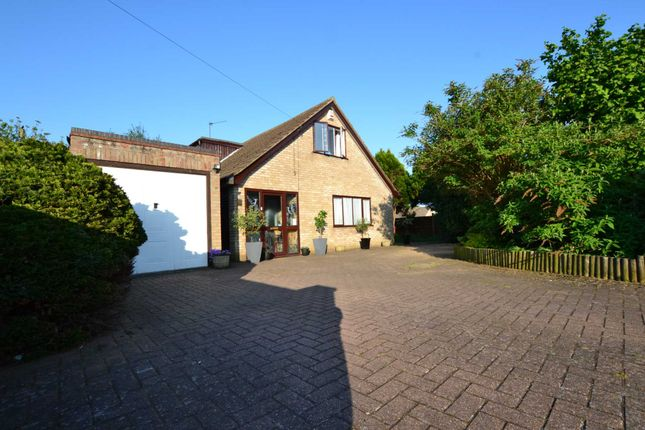Thumbnail Property for sale in Olive Road, New Costessey, Norwich