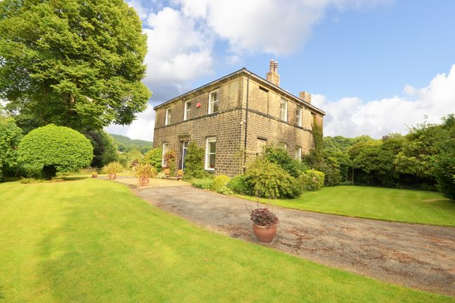 Thumbnail Detached house to rent in Smithy Place, Brockholes, Holmfirth