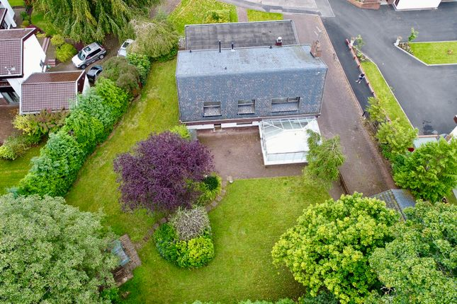 Thumbnail Detached house for sale in Lady Jane Gate, Bothwell