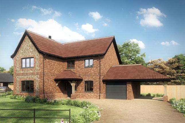 Thumbnail Detached house for sale in Pound Green Lane, Shipdham, Thetford