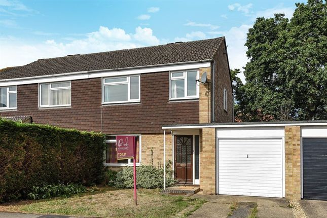 Thumbnail Property to rent in Whaley Road, Wokingham